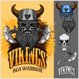 Guerreiro e elementos de Viking Foto de Stock