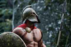 Guerreiro espartano nas madeiras Fotos de Stock
