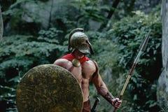 Guerreiro espartano nas madeiras Foto de Stock