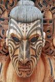 Guerreiro maori imagens de stock