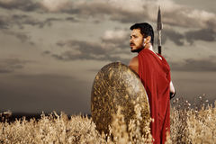 Guerreiro que veste como a vista espartano sobre o ombro Imagem de Stock