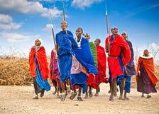 Guerreiros do Masai que dançam saltos tradicionais tanzânia imagens de stock royalty free