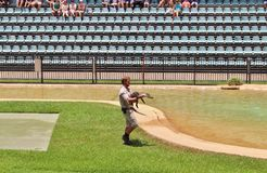 Guerreiros dos animais selvagens do jardim zoológico de Austrália Imagens de Stock Royalty Free
