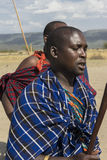 Guerrero de Maasai Imágenes de archivo libres de regalías