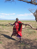 Guerrero de Massai Foto de archivo libre de regalías