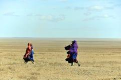Guerrero del Masai que camina a través de la sabana Fotos de archivo libres de regalías