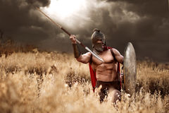 Guerrero espartano fuerte en vestido de batalla con un escudo y una lanza Foto de archivo libre de regalías
