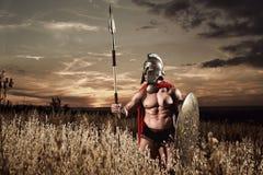 Guerrero espartano fuerte en vestido de batalla con un escudo y una lanza Fotos de archivo