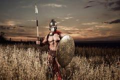 Guerrero espartano fuerte en vestido de batalla con un escudo y una lanza Imagenes de archivo