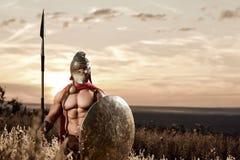 Guerrero espartano fuerte en vestido de batalla con un escudo y una lanza Imagen de archivo