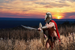Guerrero espartano joven audaz que presenta en el campo Foto de archivo