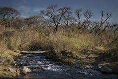 Guerrero rzeka Obrazy Royalty Free