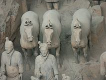 Guerreros del ejército de la terracota en Xian China foto de archivo libre de regalías