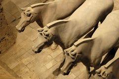 Guerreros y caballos de la terracota Fotografía de archivo libre de regalías