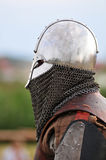 Guerrier de Viking Photographie stock libre de droits