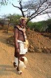 Guerrier de zoulou au grand kraal en Shakaland Zulu Village, Soth Afrique Photos stock