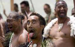 Guerrier maori Photos stock