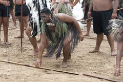 Guerrier maori chez un Haka chez Waitangi Image libre de droits