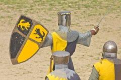 Guerrieri medioevali Fotografia Stock Libera da Diritti