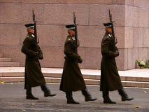 Guerrieri in servizio Immagine Stock Libera da Diritti
