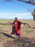 Guerriero di Massai Fotografia Stock Libera da Diritti