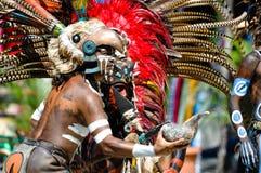 Guerriero Mayan antico Fotografia Stock Libera da Diritti