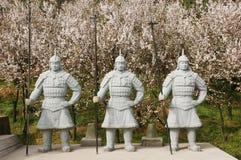 Guerriers chinois de terre cuite Images stock