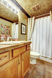 Guest bathroom with stone tiled floor, and cheetah print ceiling Stock Photo