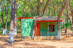 Guest house in the coniferous forest Royalty Free Stock Image