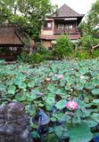 Guest house with lotus pond. A photograph image of a quaint little tropical indonesian style guesthouse hotel in Ubud, Bali, beside a beautiful garden pond full Royalty Free Stock Photography