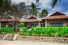 Guest houses among palm trees, Vietnam Stock Images
