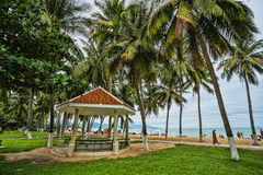 Guest houses among palm trees, Vietnam Royalty Free Stock Image