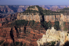 Guests At Viewpoint Below Lodge, North Rim Of Grand Canyon National Park, Arizona Royalty Free Stock Photo