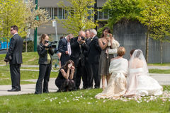 Guests and family taking photos of bride Stock Photos