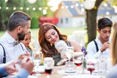 Guests with a small dog sitting at the table outside in the backyard. Guests with a small white dog sitting at the table outside in the backyard Royalty Free Stock Images