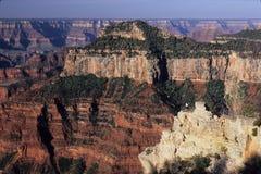 Guests at viewpoint below lodge, north rim of Grand Canyon National Park, Arizona. Guests viewing canyon at viewpoint below lodge, north rim of Grand Canyon Royalty Free Stock Photo