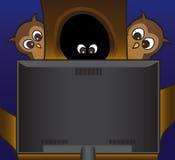 Gufi che guardano TV Fotografie Stock Libere da Diritti