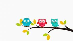 Gufi che si siedono nell'albero Immagini Stock Libere da Diritti