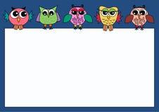 Gufi Colourful che tengono un segno Fotografie Stock