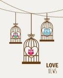 Gufi di amore Immagine Stock Libera da Diritti