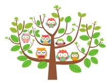 Gufi ed albero Immagini Stock Libere da Diritti