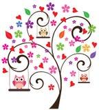 Gufi nell'albero Immagine Stock