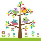 Gufi svegli sull'albero variopinto e sui fiori Immagine Stock Libera da Diritti