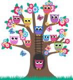 Gufi in un albero Fotografia Stock Libera da Diritti
