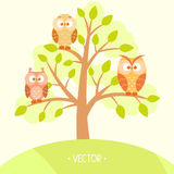 Gufi in un albero Immagini Stock Libere da Diritti
