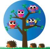 Gufi variopinti di un ow completo dell'albero illustrazione vettoriale
