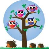 Gufi variopinti di un ow completo dell'albero royalty illustrazione gratis