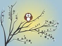 Gufo che si siede sull'albero royalty illustrazione gratis