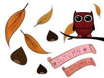 Gufo delle castagne delle foglie di autunno Immagine Stock