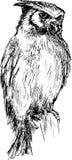 Gufo disegnato a mano Fotografia Stock Libera da Diritti